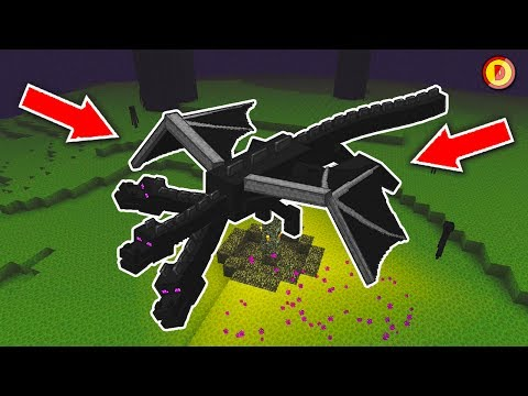 What Happens If You DONT Kill The Enderdragon? (Ps3/Xbox360/PS4/XboxOne/WiiU)