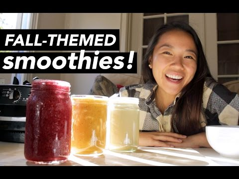 3 Flavourful Fall Smoothie Recipes ft. Vitamix | katieshim