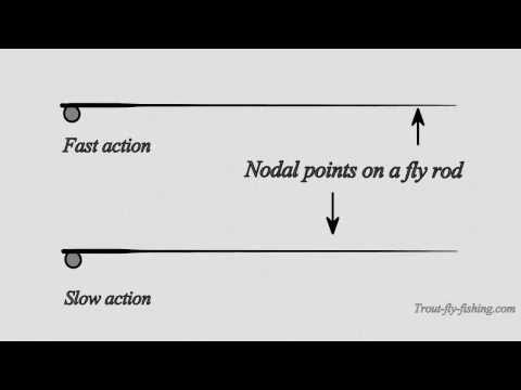 Nodal points on a fly rod that will show its action