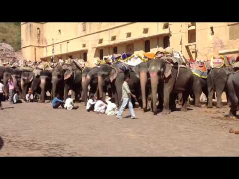 Druga Amman tample Jaipur india