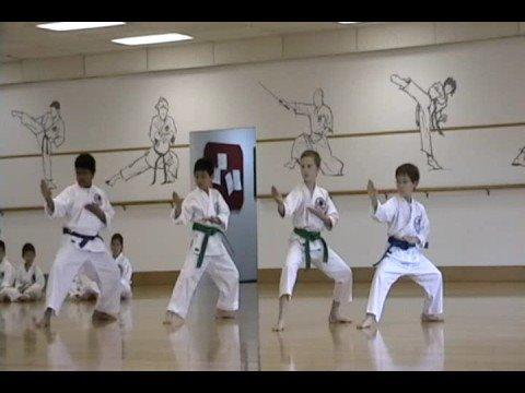 Shotokan Karate -- Purple Belt Exam