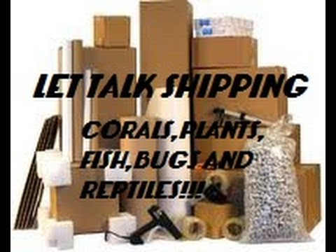 LETS TALK SHIPPING METHODS (CORALS,FISH,BUGS REPTILES, AND PLANTS)