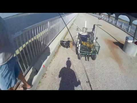 February saltwater fishing on the Broad River Pier in Beaufort SC