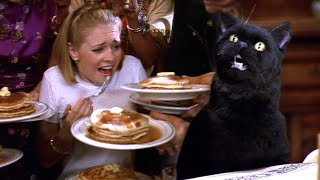 Download The 'Sabrina The Teenage Witch' When She Became A Crackhead For Pancakes Video