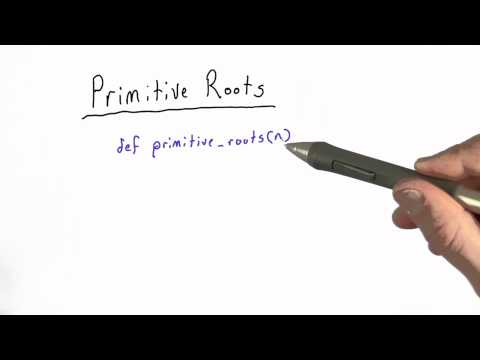 Primitive Roots - Applied Cryptography