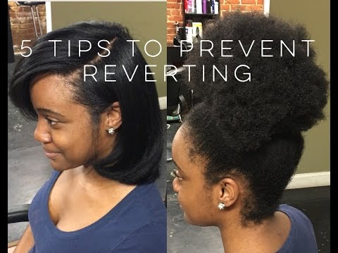 5 Tips Stop natural hair from reverting? From a stylist!