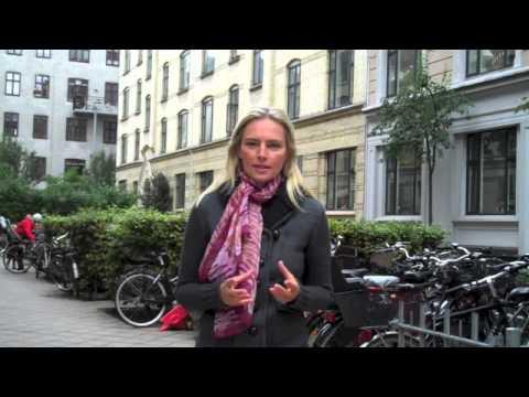 Danish Progressive Relationship Dynamics