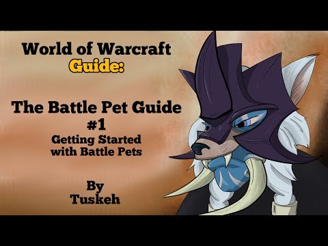 WoW: Battle Pet Guide - 01 - Getting Started