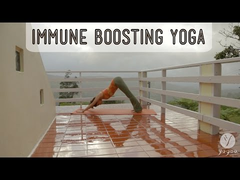 Yoga Immunity Boosting Routine: Flu-proof (open level)