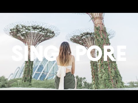 24 Hours in Singapore Travel Diary