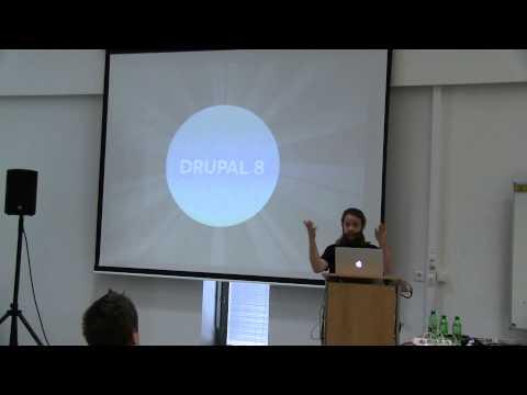 Michael Schmidt - Drupal Multilingual best practices