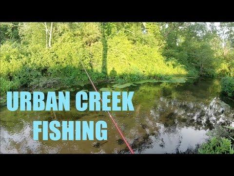 Urban Creek Fishing on Long Island NY