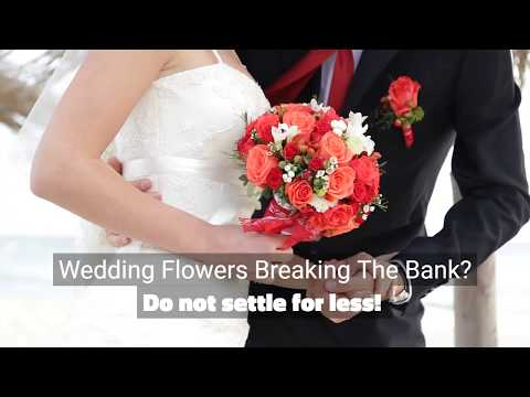 Fresh Cut Wedding Flowers Wholesale to the Public