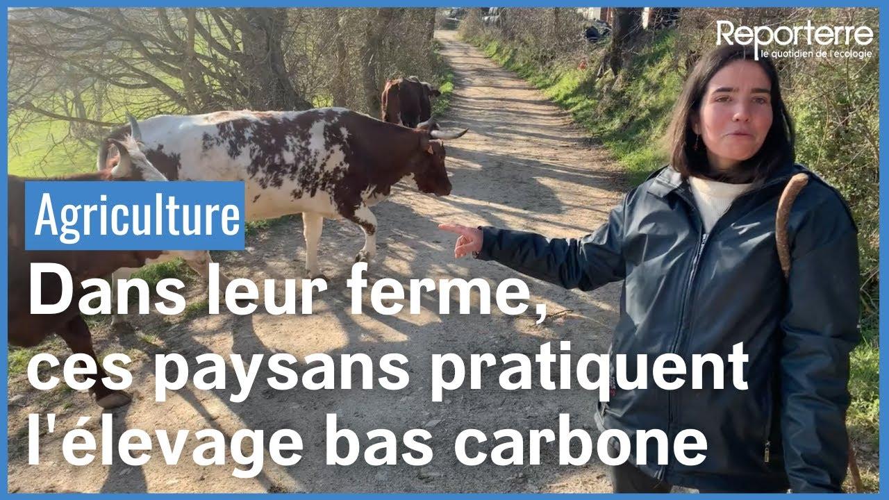 Dans leur ferme, ces paysans pratiquent l'élevage bas carbone