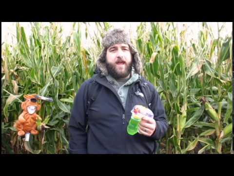 Corn Maze Promo Video Final Cut