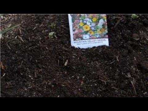 Flower Gardening : How to Prevent Crabgrass in a Wildflower Garden