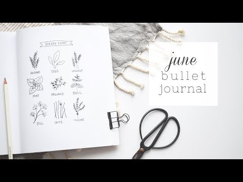 PLAN WITH ME | June 2018 Bullet Journal