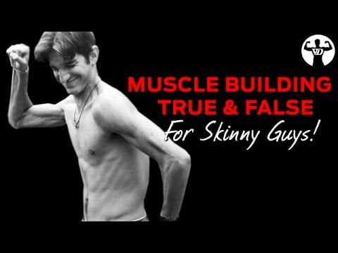 Muscle Building TRUE & FALSE Session for Skinny Guys!