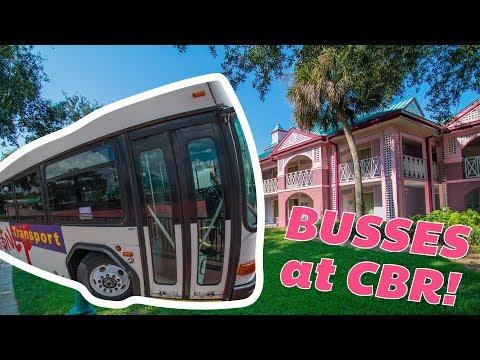 Caribbean Beach Resort Transportation