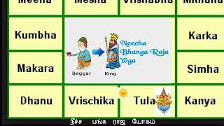 One Neecha Graham in Horoscope | Neechabhanga Raja yogam