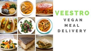 My Veestro Vegan Meal Delivery Review - Video Clips!