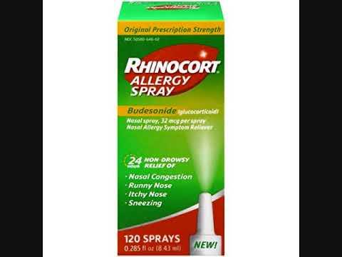 Allergy Nasal Spray  .  Rhinocort