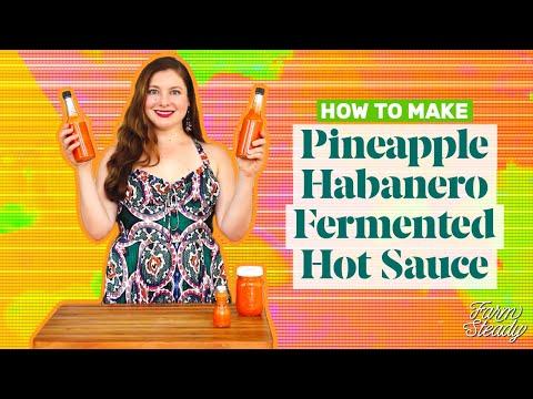 Xxx Mp4 How To Make Pineapple Habanero Hot Sauce Homemade Fermented Hot Sauce Recipe FarmSteady 3gp Sex