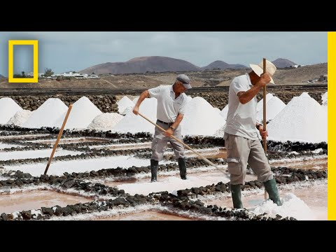 Ever Wonder How Sea Salt Is Made? Find Out Here | National Geographic
