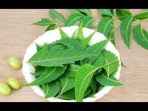 How to stop Hair fall Grow long and Thick Hair with -Indian Neem ( Hair Fall Treatment)