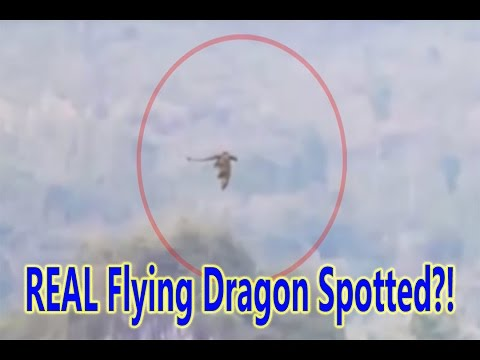 Mysterious Dragon Filmed FLYING Over Moutains in China