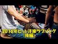 洋楽 和訳 2016年ヒット洋楽ラブソング(後編)