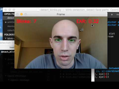 Eye blink detection with OpenCV and Python Demo #1