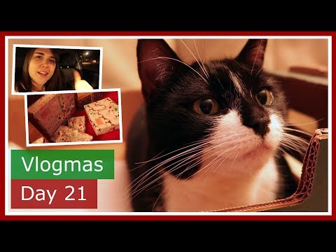 Vlogmas 2017 Day 21 | Reindeer noses and Christmas wrapping | The British Life