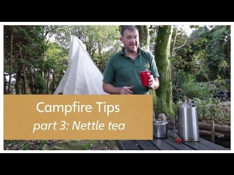 Campfire Tips part 3: Nettle Tea