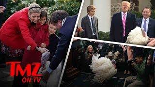 President Trump Pardons A Big Huge Turkey! | TMZ TV