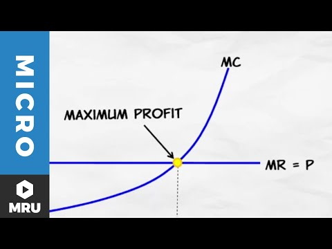 Maximizing Profit Under Competition