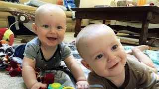 Twin Babies Laughing Hysterically - Funny Baby Videos