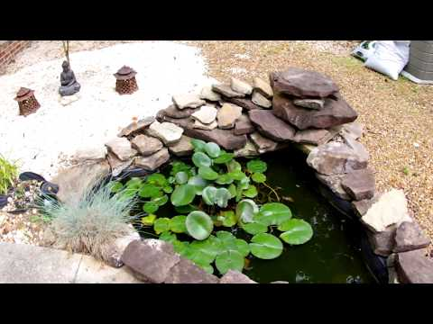 Easy Garden Pond no pump needed PART II Q & A