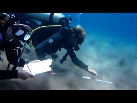 Diver Depth-Gage Profiling  - a simple, low-cost technique for underwater bathymetric surveying