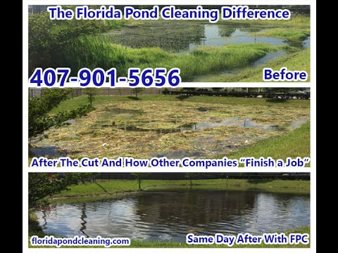 Natural Pond Weed Removal | Natural Lake Weed Removal