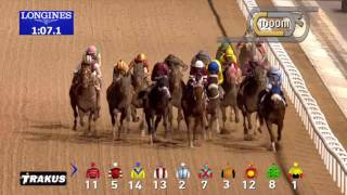 Dubai World Cup Sponsored by Emirates Airline