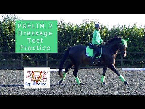 Learn The Prelim 2 British Dressage Test