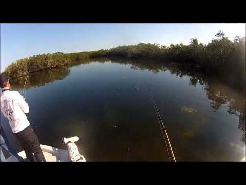 Catching Redfish In Tampa Bay Florida With Captain William Burbach