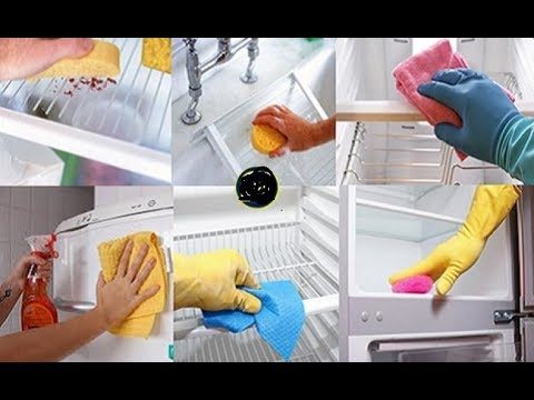 Summer Special- FRIDGE CLEANING || HOW to Deep Clean Your Fridge