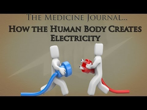 How the Human Body Creates Electricity