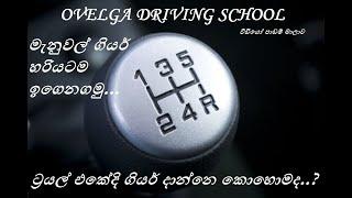 How to Drive Manual Gear Car Easily | ලේසියෙන්ම මැනුවල් කාර්  එලවන්නෙ මෙහෙමයි |Ovelga Driving School