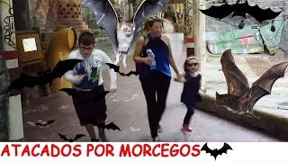 FOMOS ATACADOS POR MORCEGOS - VALENTINA E VICTOR GABRIEL