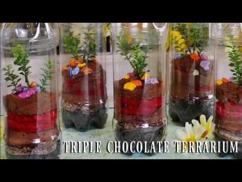 Triple Chocolate Terrarium Dessert