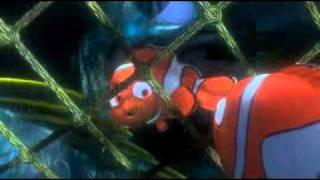 Buscando a Nemo Trabajo en Equipo