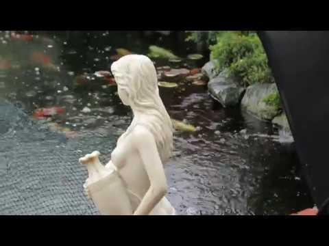 Filter for Pond Vac & pond plants